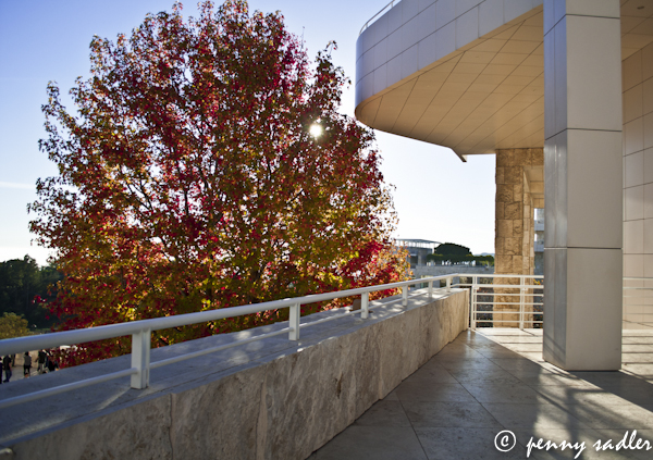 Fall color Why I love the Getty Museum @pennysadler