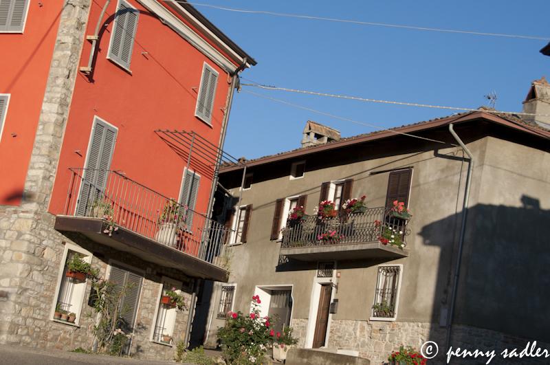 in the Oltrepo Pavese, Lombardia, Italia @PennySadler 2013