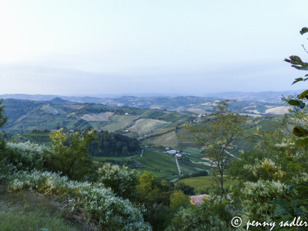 Bertinoro as seen from the Bishop's Fortress. @PennySadler 2013
