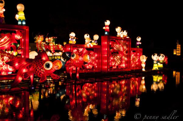 chinese lanterns festival @PennySadler 2013
