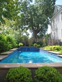 swimming pool fig tree manor @PennySadler 2013