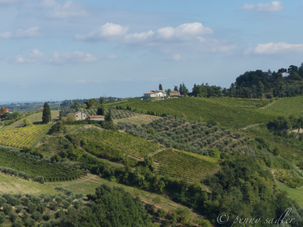 view from the castello Castrum Sagliani @PennySadler 2013