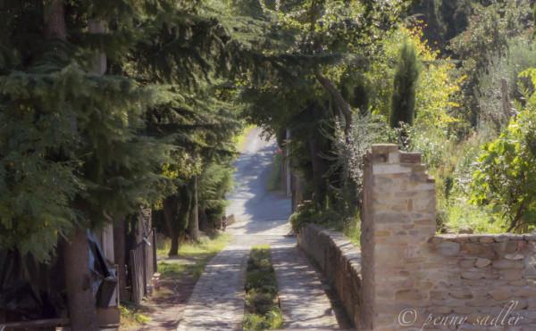 the road to Castrum Sagliani Cesena, @PennySadler 2013 - 2104