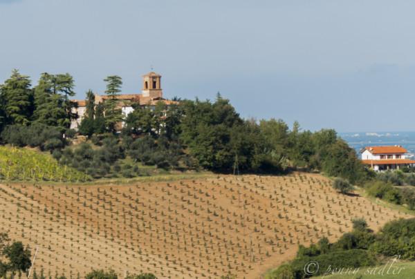 beautiful countryside Emilia romagna @PennySadler 2013-14