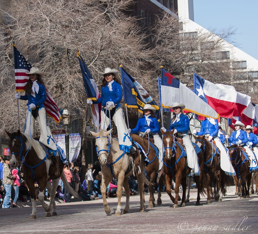 FtWorth Stock Show parade @PennySadler 2013