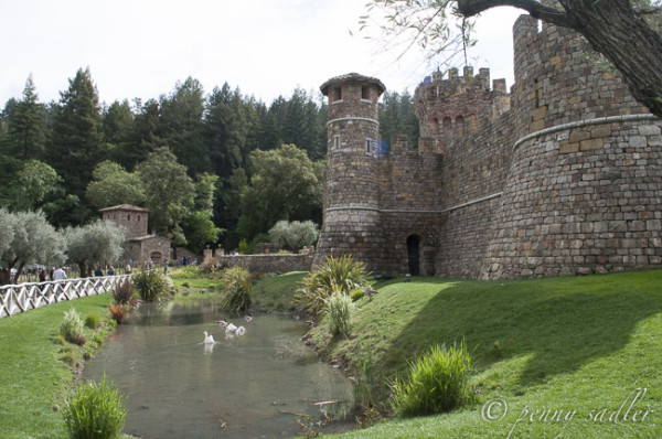 pond in front of a castle in Napa Valley from Castello di Amorosa, An Italian Castle in Napa Valley