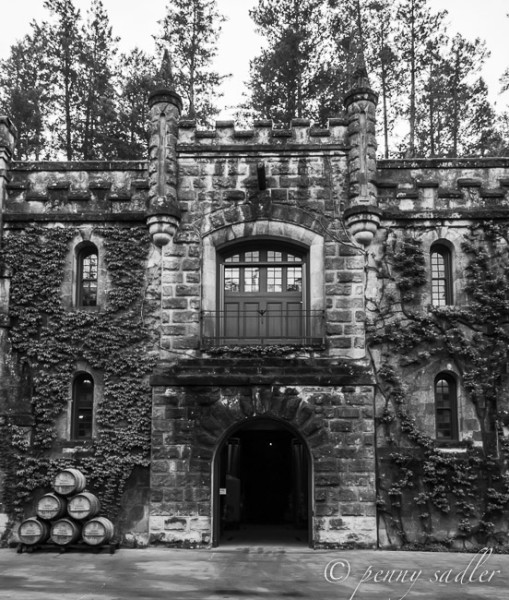 Chateau Montelena, @PennySadler 2014
