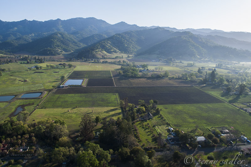 flying high with Calistoga, Balloons