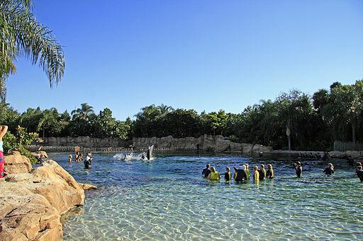 Top Orlando Florida Theme Parks