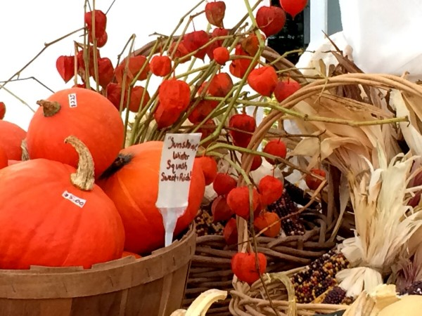 Autumn Market Colors @PennySadler 2014