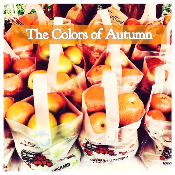 Autumn Market, Cazenovia NY @PSadler 2014