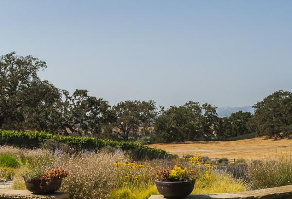 Refugio Ranch @PennySadler 2014