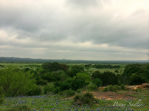 17 reasons why you should go to the texas hill country now @PennySadler