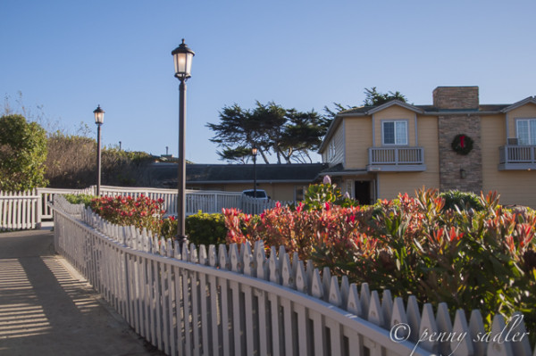 Lodging Options Cambria to Carmel, California @PennySadler 2014