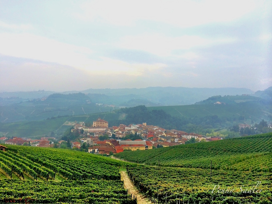 Postcard from Barolo Vineyard in Piemonte, Italy