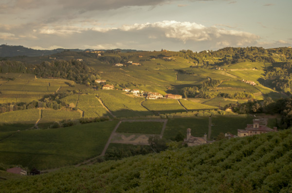 Langhe wine country, Piemonte, Italy @PennySadler 2015