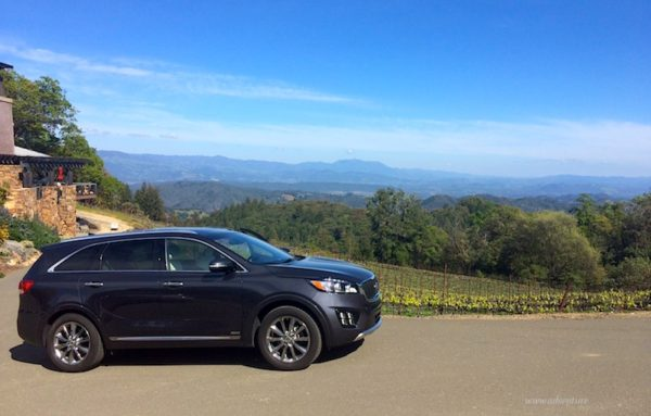 Kia Sorento at Gustafson Vineyards