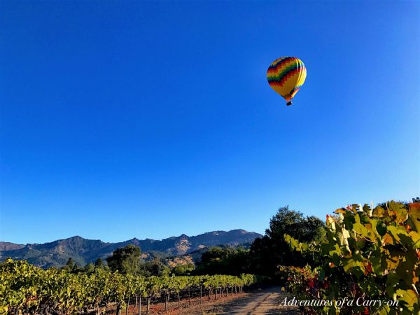 Balloon over vineyards in Napa Valley Northern California Wine Country