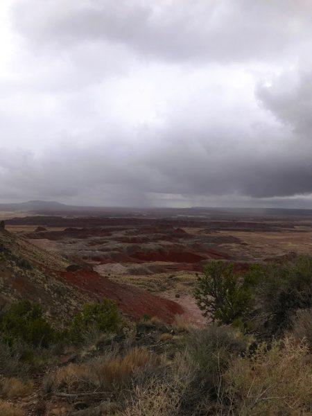 Isnt' it beautiful? Why Visit Arizona's Painte4d desert ©PennySadler