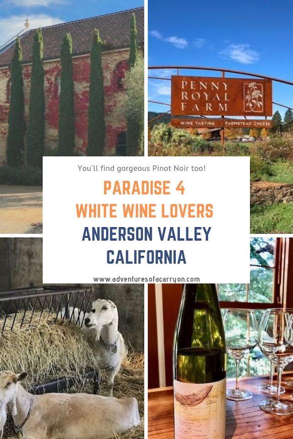 Anderson Valley, Mendocino, CA