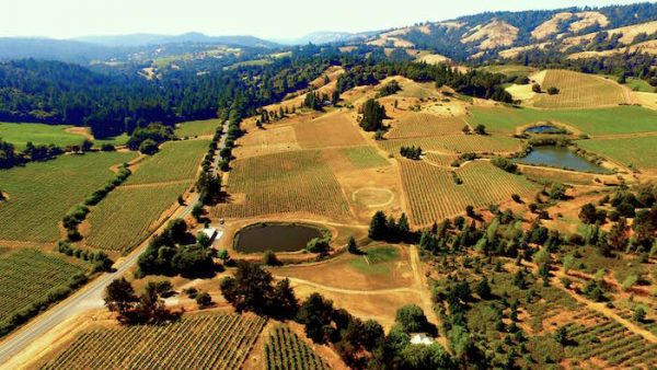 White Wine Lovers Paradise Anderson Valley California