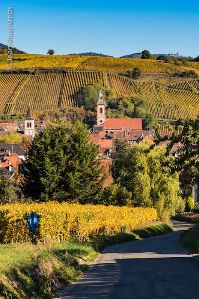 Sporen Vineyard, Riquewihr. From Wine, Castles and Culture: Top Reasons To Visit Riquewihr, Alsace.