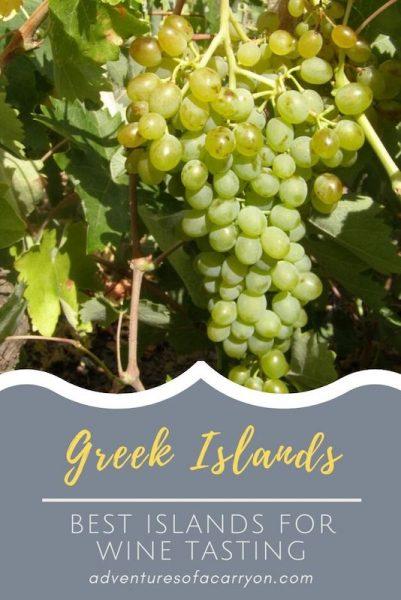 Wine Tasting Best of the Greek Islands