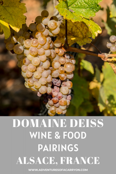 Wine & Food Pairings from Domaine Deiss Alsace, France, article by Penny Sadler for Adventures of a Carryon