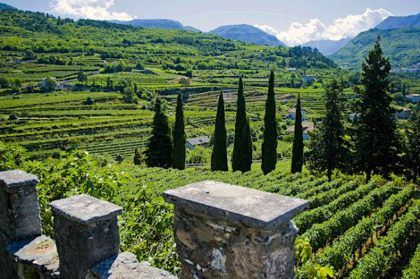 An Introduction to Sparkling Wines Around the World Trentodoc, Italy