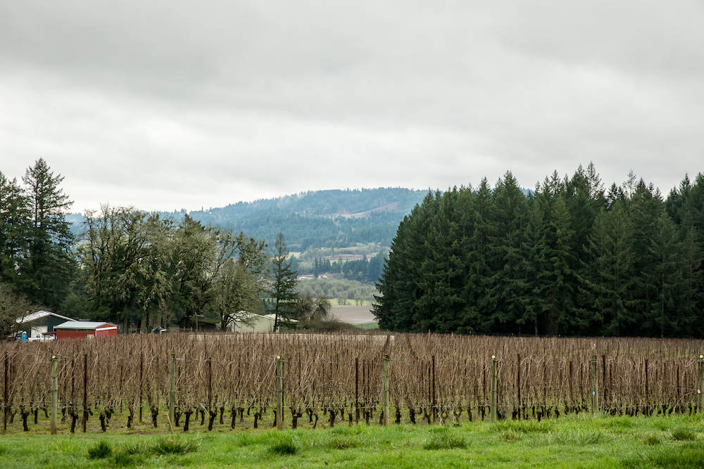 Utopia Vineyards Willamette Valley