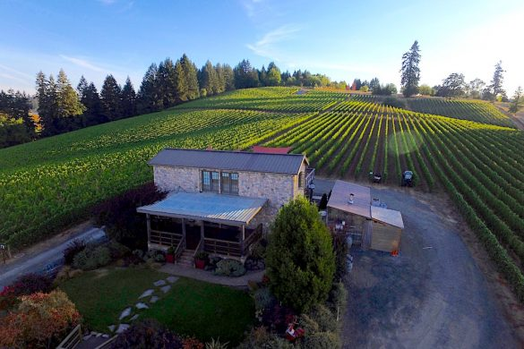 Lenne estate vinyards Willamette Valley