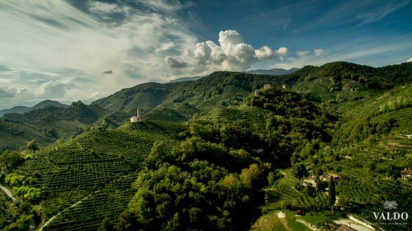 Prosecco HIlls of Valdobbiadene Italy